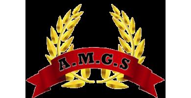 Gardiennage de zone industrielle en Paca avec AMGS